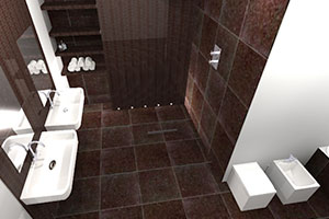Virtual World Wet Rooms
